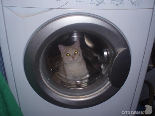 стиральная машина индезит wisl