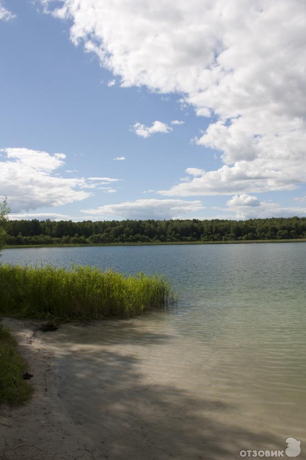 коллег озеро данилово омская область фото стартовая сорт